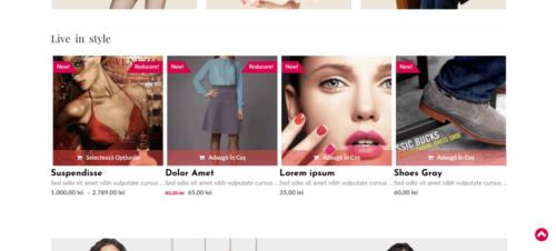Design Online Store - magazin online la cheie WooCommerce Florentinailiescu.com
